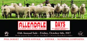 2017 Flock Ram Sale Catalogue Now Available