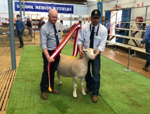 2019 Royal Adelaide Show Success