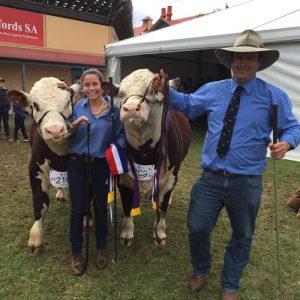 Reserve Junior Bull - Allendale Washington K5